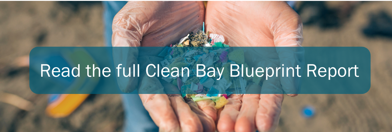 Read the full Clean Bay Blueprint Report