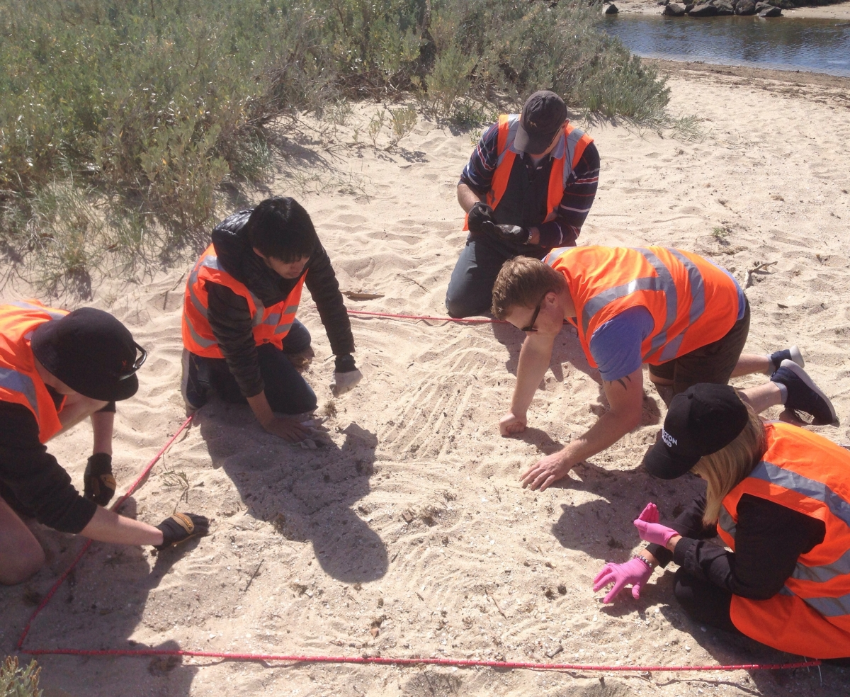 Marine Biologist for a Day - Litter Audit for Microplastics