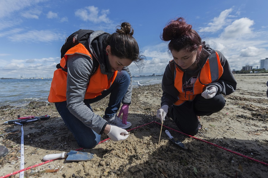 Corporate Volunteering: Marine Biologist for a Day