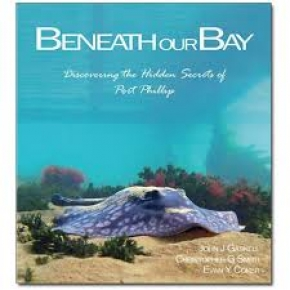 Beneath Our Bay Book